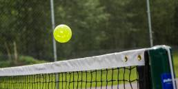 pickleball racquets and paddles